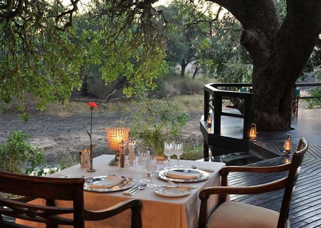 dining in the bush