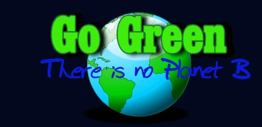 Eco tourism value